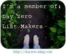 DayZero.ning.com Logo
